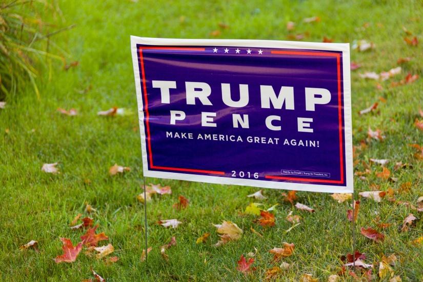 Donald Trump: The WildCard